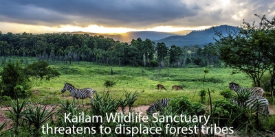 Kailam Wildlife Sanctuary threatens to displace forest tribes